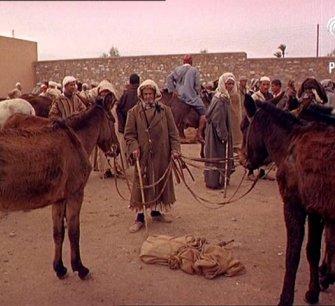 Morocco Aka Moroccan Fantasia Beware - Other Colour Pics Share This Title (1967)