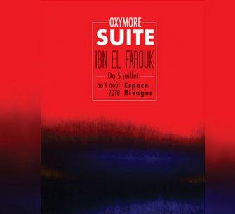 "Vernissage de l'exposition ""Oxymore Suite"" de Ibn El Farouk"
