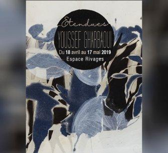 """Vernissage de l'exposition """" Etendues """" de Youssef Gharbaoui"""