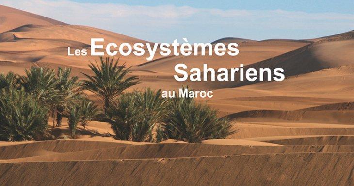 marocForestierChp4P8