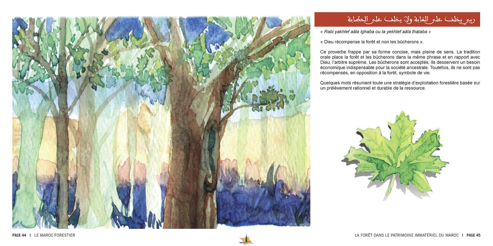 marocForestierChp8P3-05