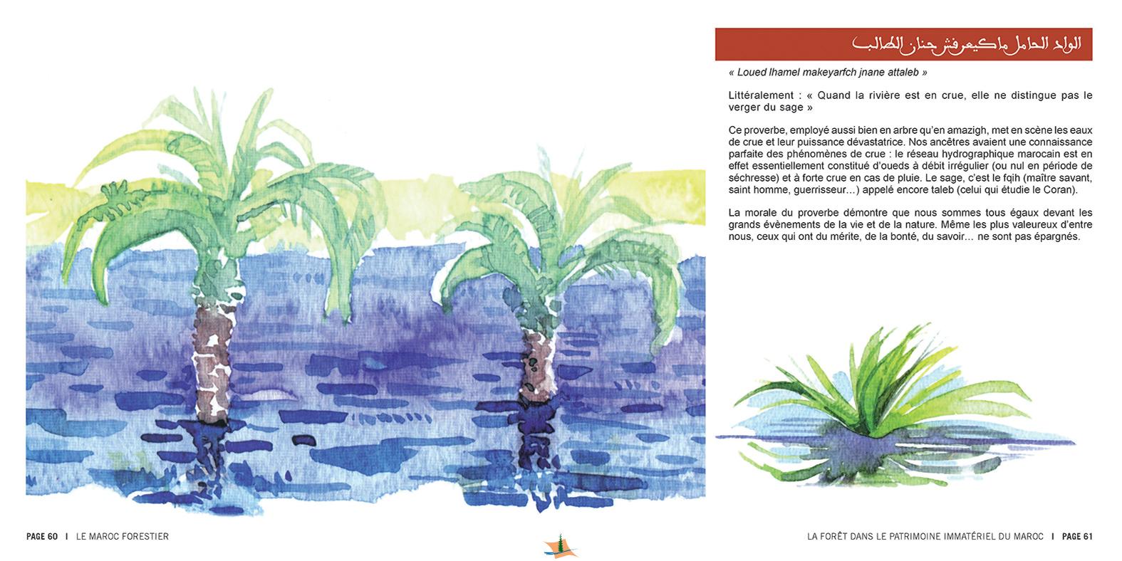 marocForestierChp8P3-13