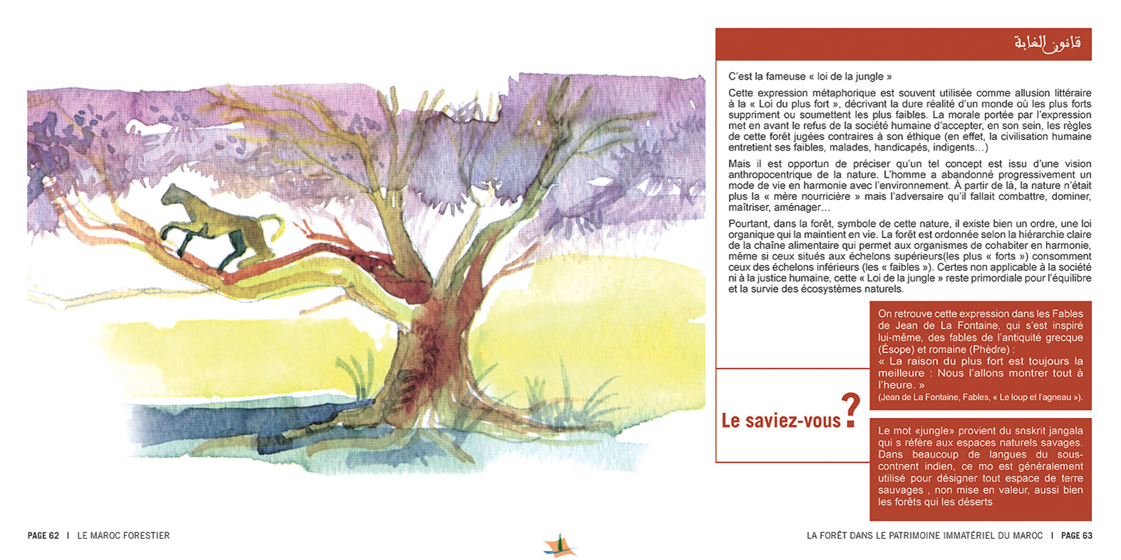marocForestierChp8P3-14