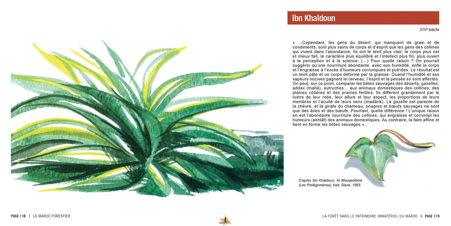 marocForestierChp8P5-07