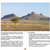 marocForestierChp4P1-04