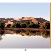 marocForestierChp4P2-01