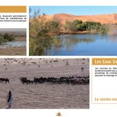 marocForestierChp4P2-03