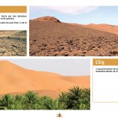 marocForestierChp4P3-02