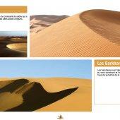 marocForestierChp4P3-04