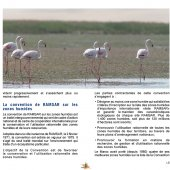 marocForestierChp5P1-06
