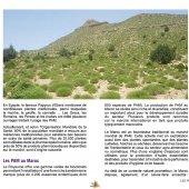 marocForestierChp6P1-04