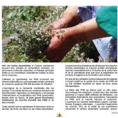 marocForestierChp6P1-05