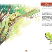 marocForestierChp8P3-06