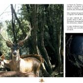 Les Aires protégées du Maroc - Les Parcs Nationaux-4