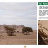 Les Aires protégées du Maroc - Les Parcs Nationaux-8