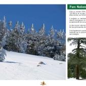 Les Aires protégées du Maroc - Les Parcs Nationaux-10