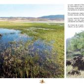 Les Aires protégées du Maroc - Les Parcs Nationaux-11