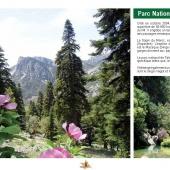 Les Aires protégées du Maroc - Les Parcs Nationaux-12