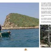 Les Aires protégées du Maroc - Les Parcs Nationaux-15