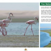 Les Aires protégées du Maroc - Les Parcs Nationaux-18
