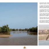 Les Aires protégées du Maroc - Les Parcs Nationaux-19