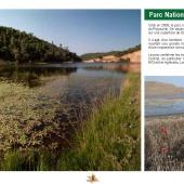 Les Aires protégées du Maroc - Les Parcs Nationaux-20