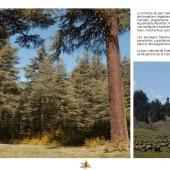 Les Aires protégées du Maroc - Les Parcs Nationaux-21